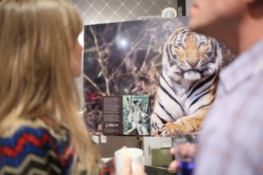 An Evening with the Animal Legal Defense Fund-Washington DC