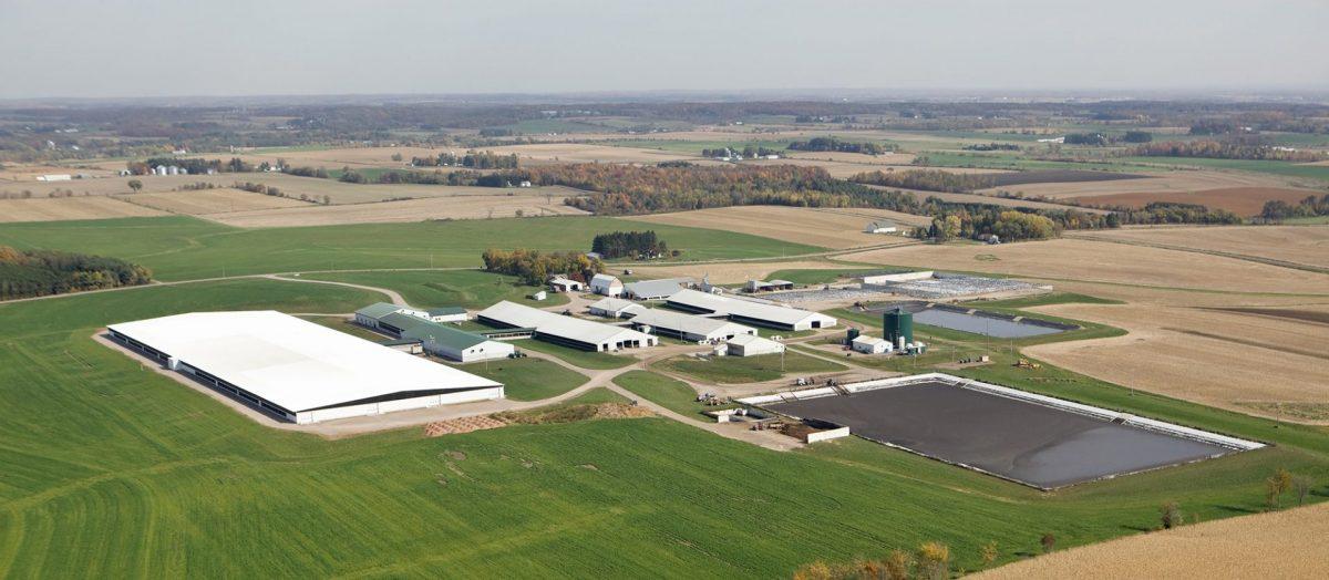 factory farm